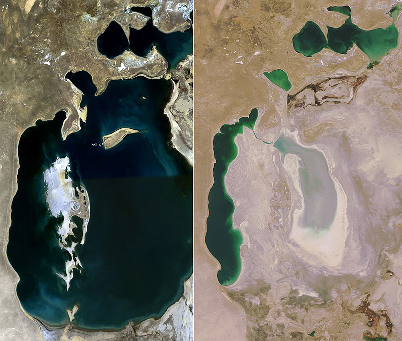 Satellite imagery of the Aral Sea in 1998 and 2008