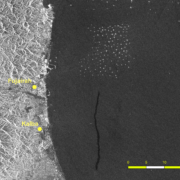 "The remnants of a likely bilge dump (dark streak) possibly from a vessel traveling north to a tanker ""parking lot"" (the cluster of dozens of bright spots, each representing a vessel at anchor) off the coast of United Arab Emirates."