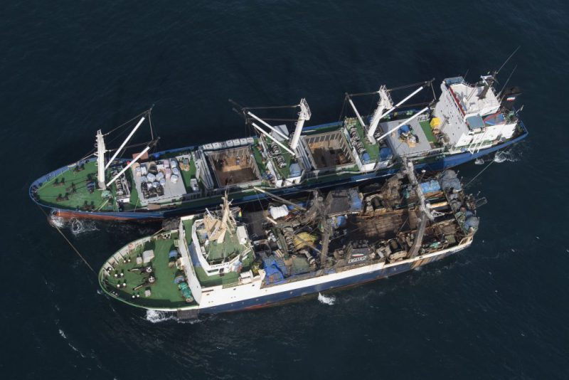 Illegal transshipment of fish between Saly Reefer and Flipper 4 fishing vessel. (Photo courtesy of Greenpeace.)